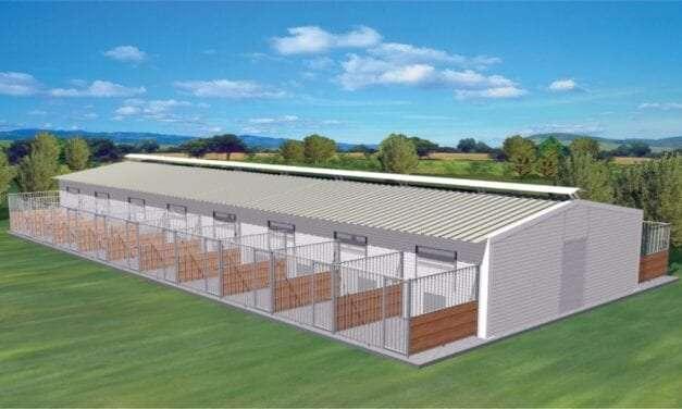 Εντάχθηκε στο Πρόγραμμα ΦΙΛΟΔΗΜΟΣ ΙΙ  η πρόταση του Δήμου Τοπείρου  για τη δημιουργία καταφυγίου  αδέσποτων ζώων συντροφιάς
